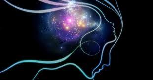 ذهن مغز مغز و ذهن انسان ضمیر ناخودآگاه ضمیر خودآگاه ضمیر روح جسم رشته های عصبی افکار حس موفقیت